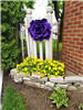 White Fence with Large Purple Flower and Yellow Flowers in Planted Area