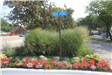 Landscaping and Van Dyke Road Sign